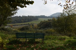 bench-in-the-green_21936298743_o